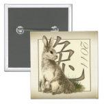 Año del botón cuadrado del conejo 2011 pins