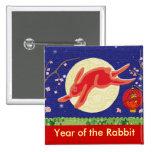 Año del conejo 2011 pins
