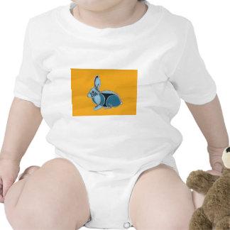 Año del conejo trajes de bebé