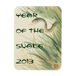 Año del imán de la serpiente