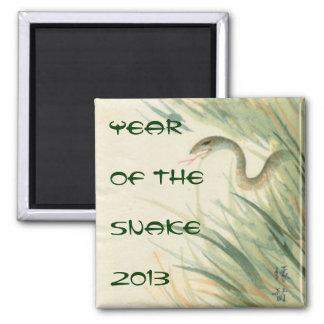 Año del imán del cuadrado de la serpiente