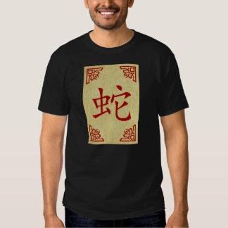 año del símbolo del chino de la serpiente playera