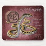 Año del zodiaco del chino de la serpiente tapetes de ratones