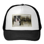 Año Nuevo - elegancia de oro - Boston Terrier Gorros