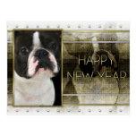 Año Nuevo - elegancia de oro - Boston Terrier Tarjeta Postal