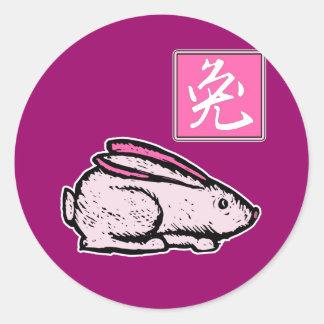Año rosado del conejo de la ropa y de los regalos pegatinas redondas