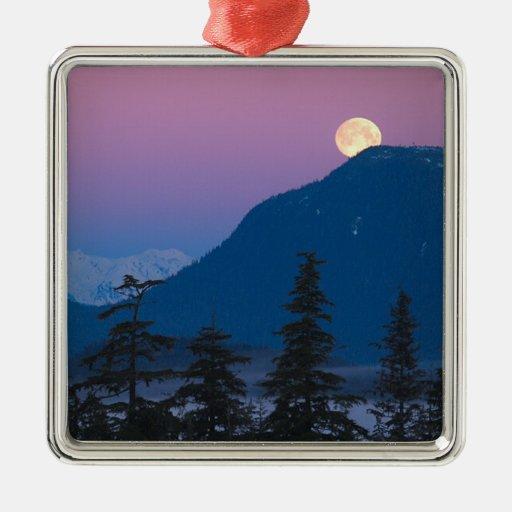 Anochecer en Alaska Ornamentos Para Reyes Magos