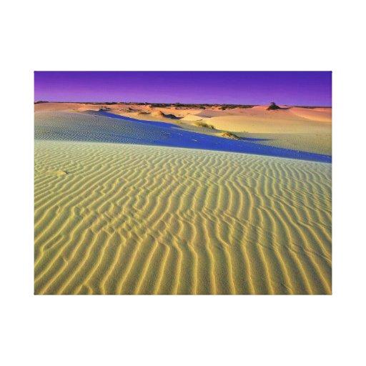 Anochecer sobre las arenas de Monahans Lona Envuelta Para Galerias