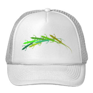 Anole Gorros