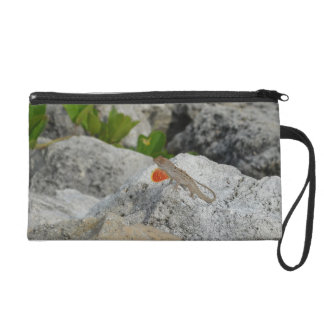 anole in florida showing off male against rocks wristlet purse