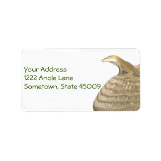 Anole Label