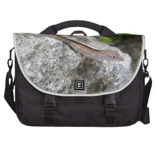 Anole Lizard Laptop Bags