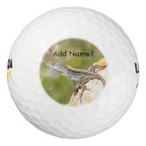 Anole Lizard Photo Golf Balls