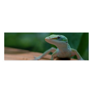 anole profile card or bookmark Double-Sided mini business cards (Pack of 20)