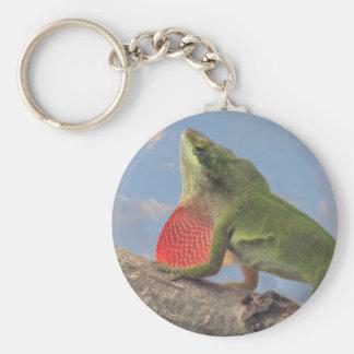 Anole verde, camaleón americano, Anolis Carolinens Llavero Redondo Tipo Pin