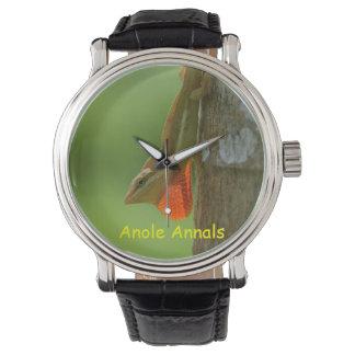 Anole Watch: Anolis pulchellus Wristwatch