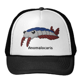 Anomalocaris Printed Hat