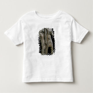 Anonymous couple known as the Memphis Couple Toddler T-shirt