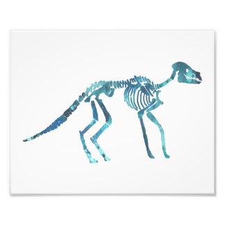 anoplotherium skeleton photo print