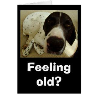 Años del perro tarjeta de felicitación