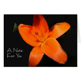 Anote for you - orange Lily Card