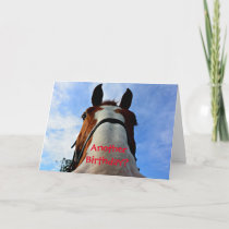 Another Birthday? Funny Horse Greeting Card