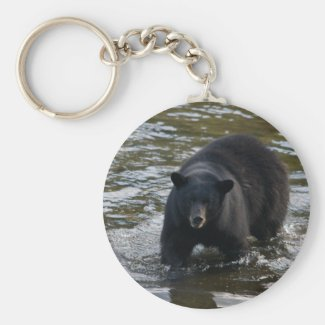 Another black bear key chain