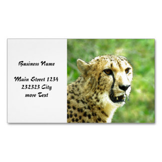 another cheetah magnetic business cards (Pack of 25)
