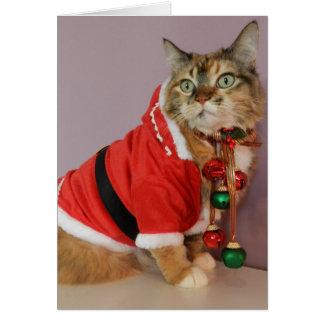 Another Christmas Santa cat Greeting Card