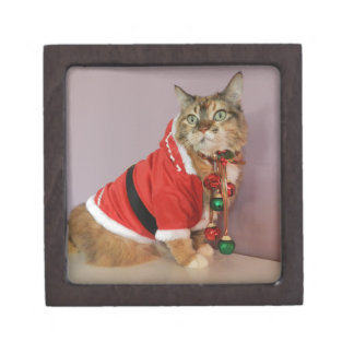 Another Christmas Santa cat Premium Jewelry Boxes