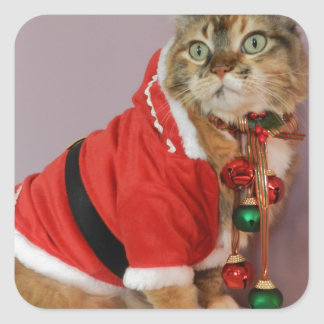 Another Christmas Santa cat Square Sticker