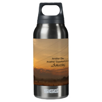 Another Day, Another Opportunity to be Amazing Insulated Water Bottle