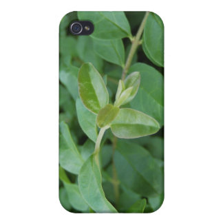 Another Divergent Design iPhone 4/4S Cases