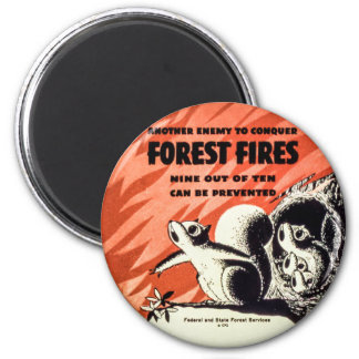 Another Enemy to Conquer Forest Fires Vintage Magnet