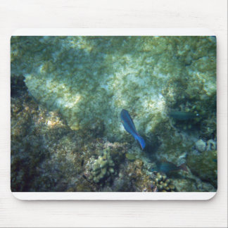 Another Fishy Mouse Pad