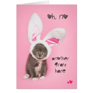 Another Gray hare Kitten Easter or Birthday Card