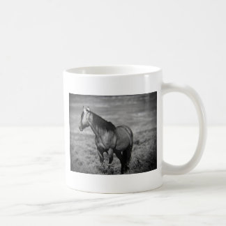 Another great Sand Wash Basin Mustang Classic White Coffee Mug