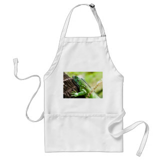 another green day adult apron