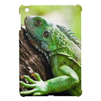another green day iPad mini case