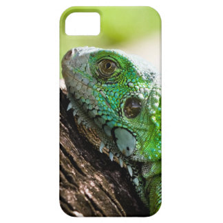 another green day iPhone 5 case