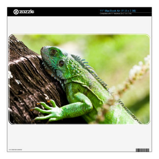 """another green day skin for 11"""" MacBook air"""
