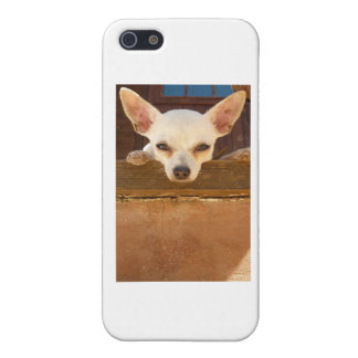another horney italian iPhone SE/5/5s case