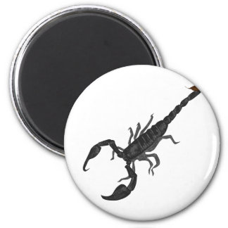 Another Imperial Black Scorpion Magnet