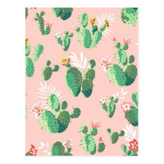Another Lovely Cactus Flowers Postcard