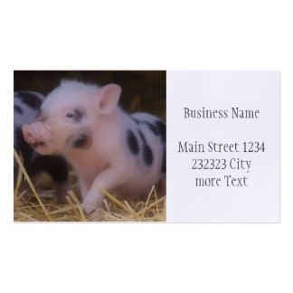 another lovely piglet business card