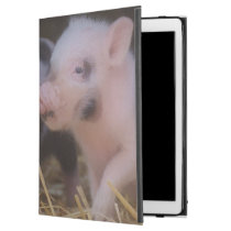 "another lovely piglet iPad pro 12.9"" case"