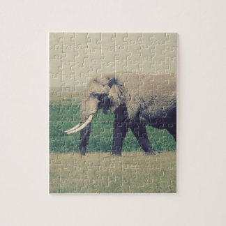 Another Marching Elephant Puzzle