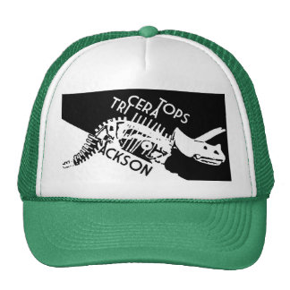Another Trucker Hat