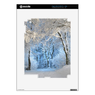 another winter wonderland decal for iPad 2