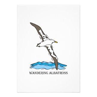 Anrie Albatross Invite